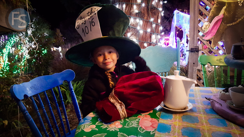 Christmas Lights - Cambria Pines Lodge - Montana Dressed as the Mad Hatter  2015